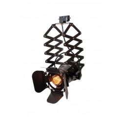 Черный Прожектор Орхидея Levistella